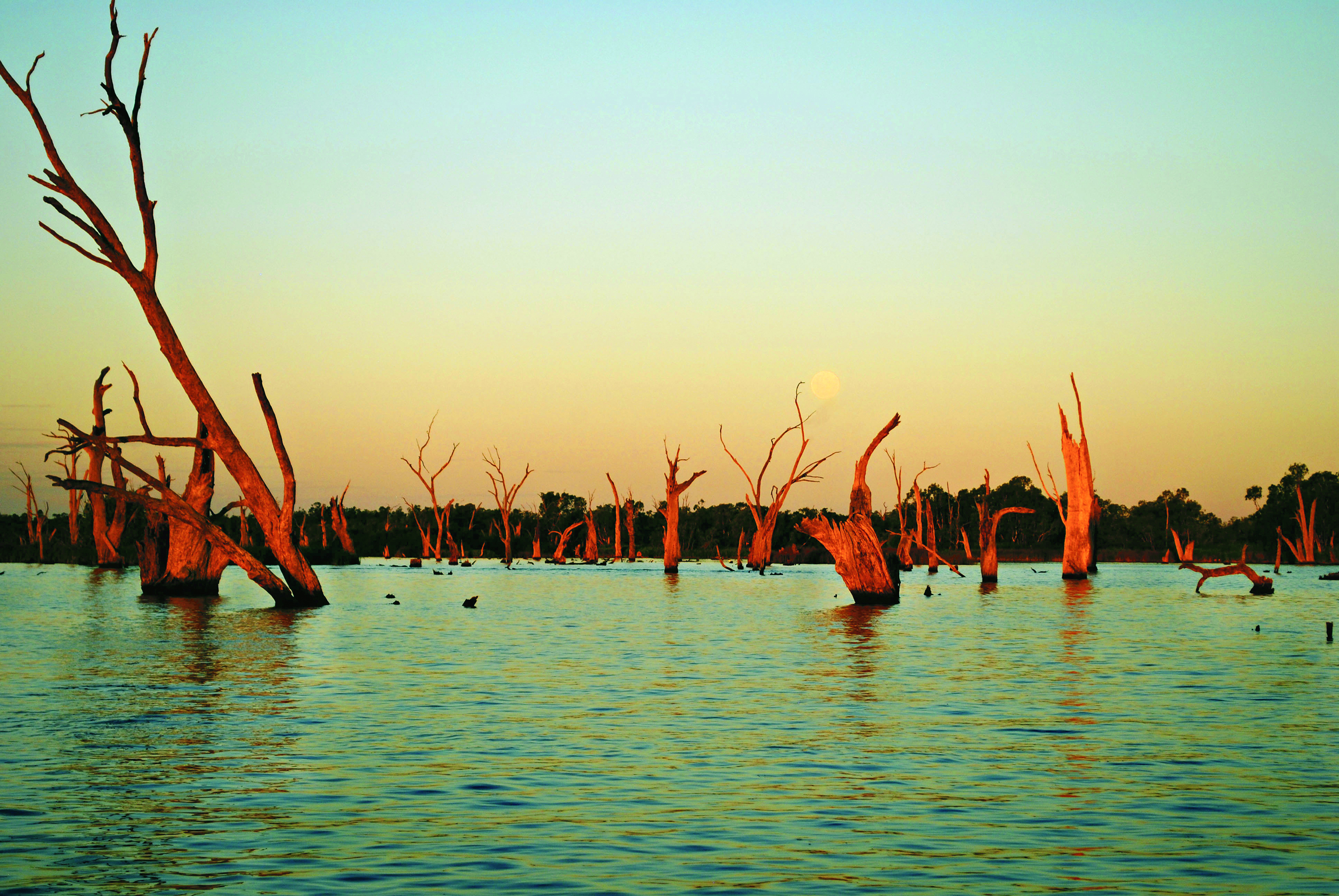JANUARY_-_Image_for_Damian_Drum_Calendar_Ty_Sutherland_Nagambie_Lake_11.09.17.jpg