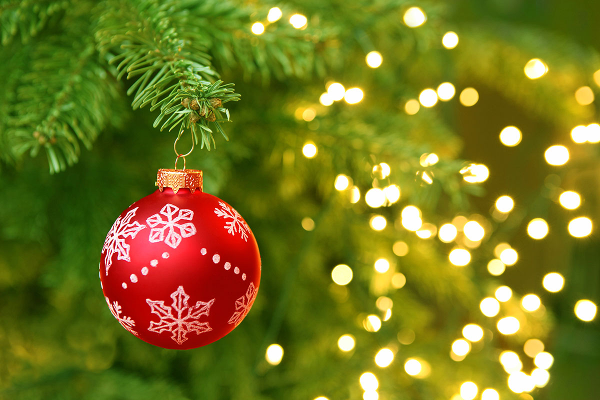 Red-Christmas-Ornament-with-White-Snowflakes-Hanging-on-a-Christmas-Tree-Branch.jpg