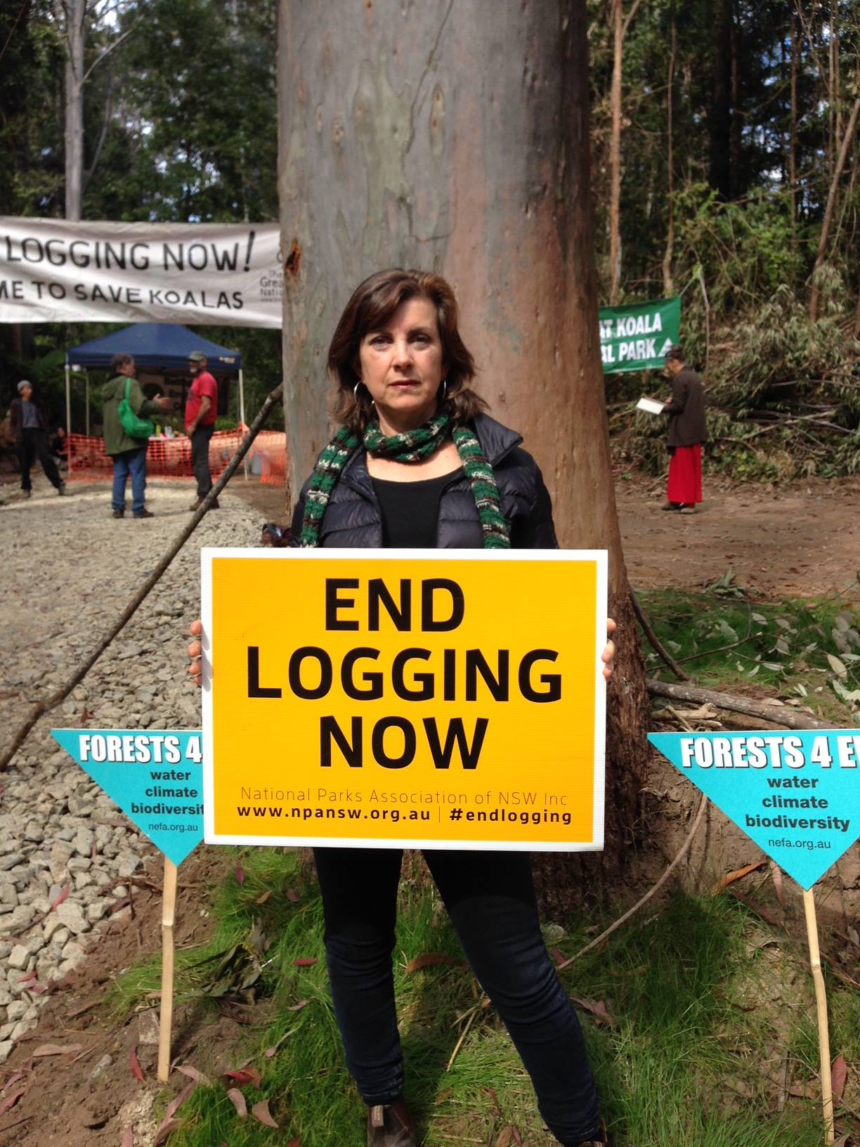 Greens slam Forestry Corporation's decision to dismantle forest blockade - Dawn Walker MP