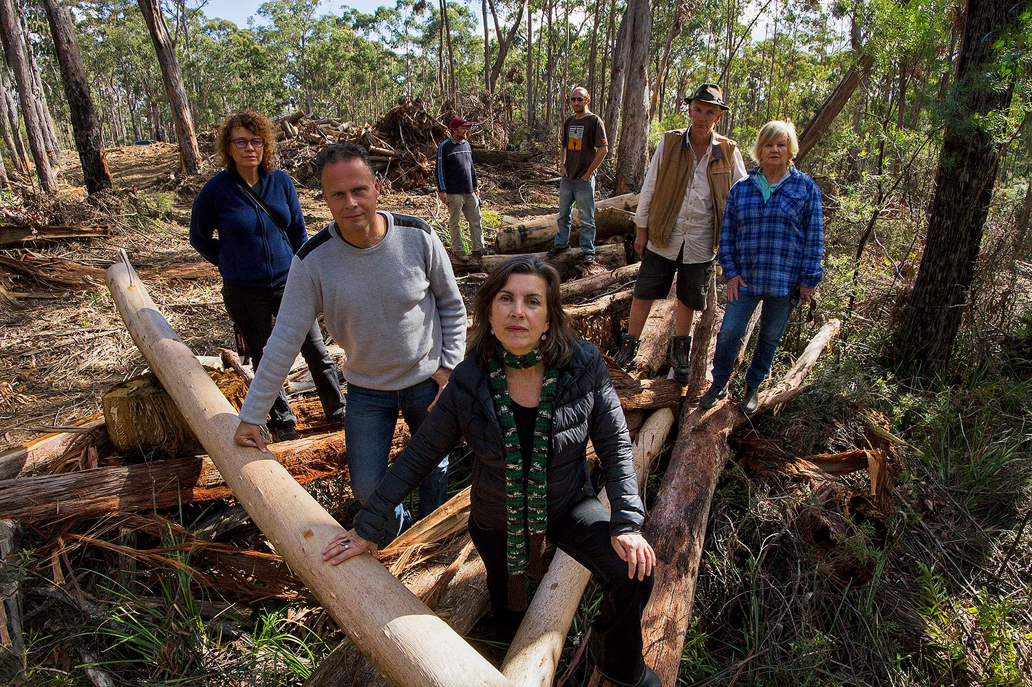 Greens call on NSW Government to come-clean on cancelled forest visit with peak environment group - Dawn Walker MP