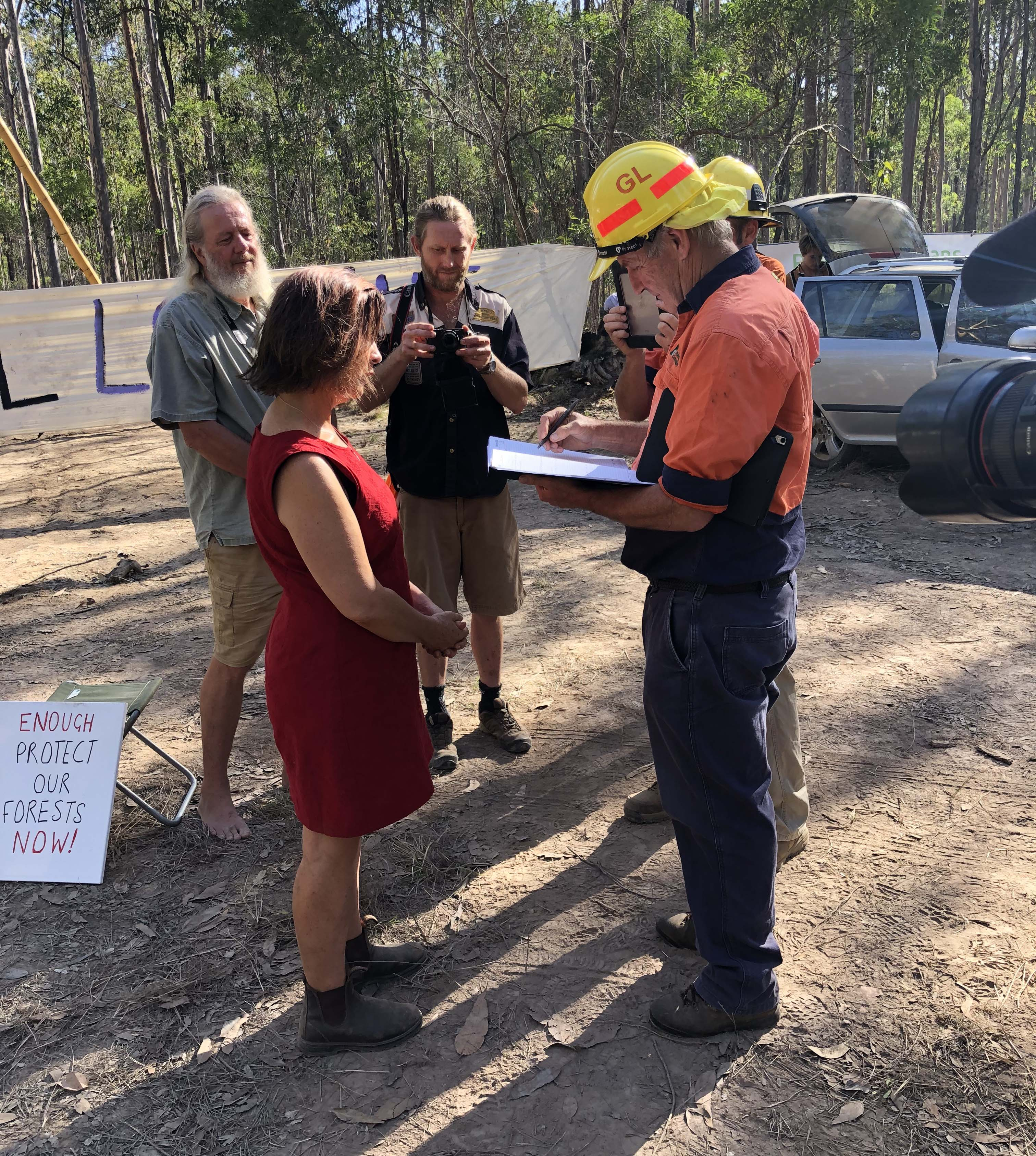 Greens MP fined at logging protest protecting koalas - Dawn Walker MP