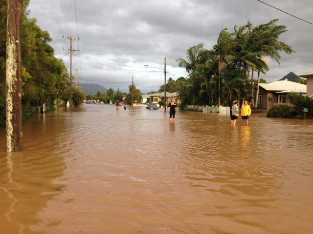 Greens call for Byron and Ballina LGAs to be eligible for Disaster Relief Funding - Dawn Walker MP