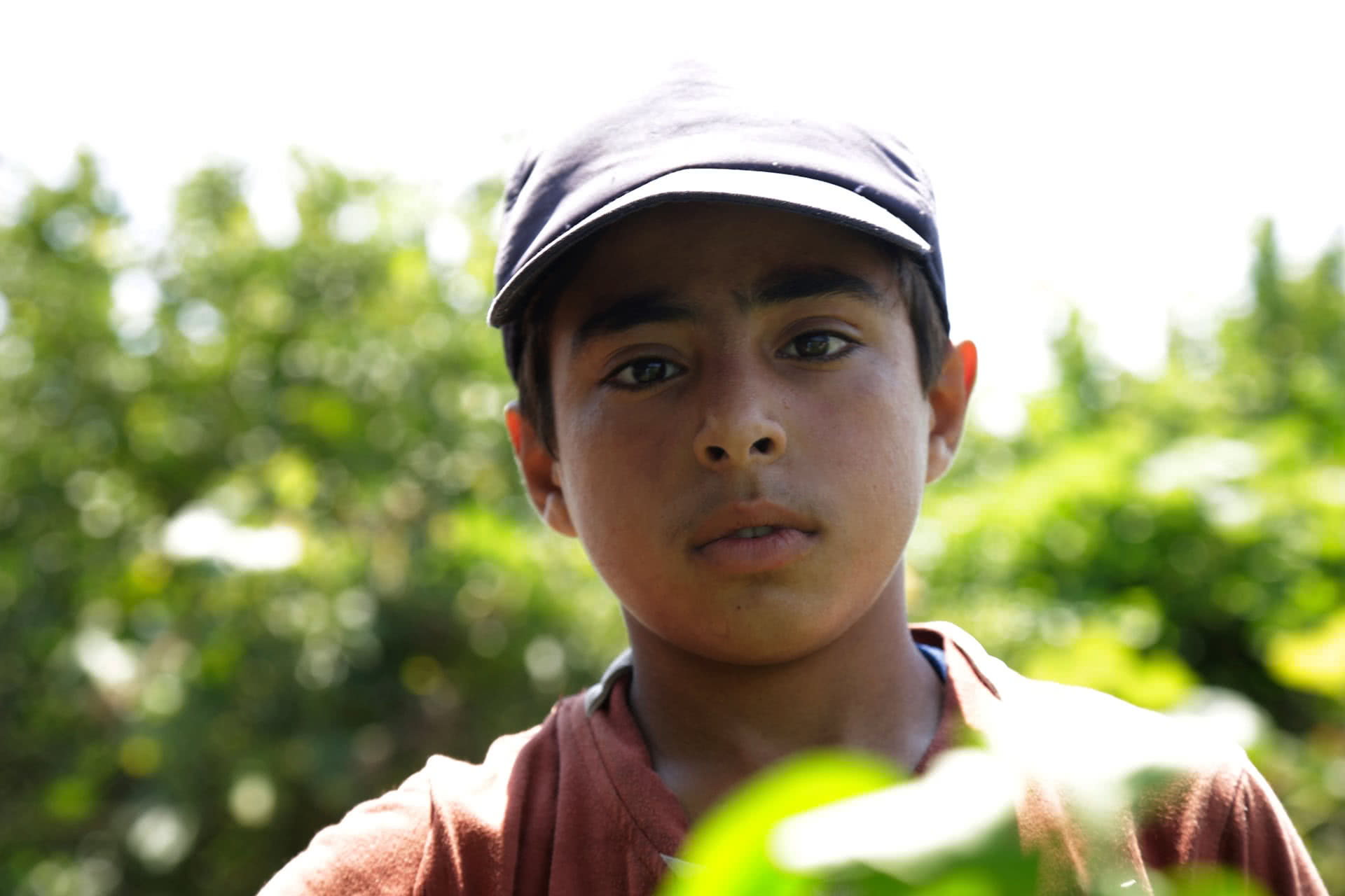 Ahmad Abu Samra, 13, works on his family's land to help provide food for his family. (Photo: DCIP / Saud Abu Ramadan)