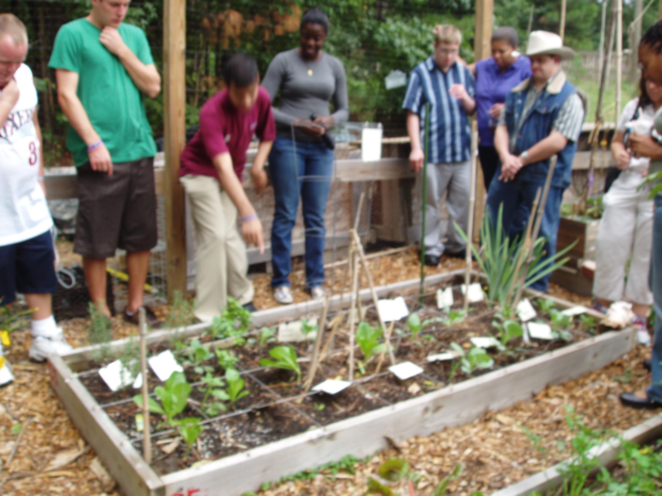 HOPE_Garden_Cooking_Class_Field_Trip_Sept._20_2011_014.jpg