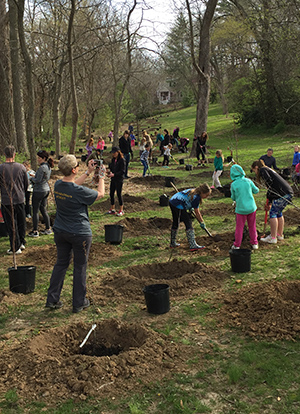 Girl scouts planting trees