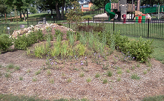 Engineered Rain Gardens