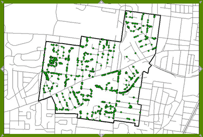 Rock Hill tree inventory map