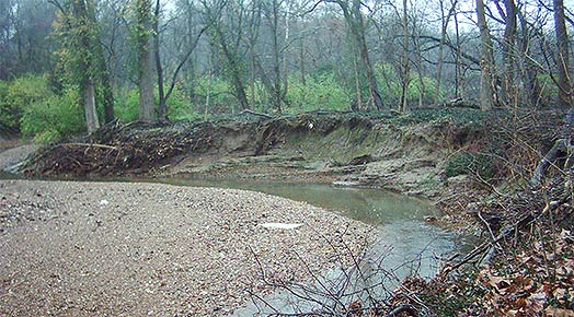 Erosion along creek bank