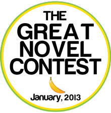 novel_contest_small2
