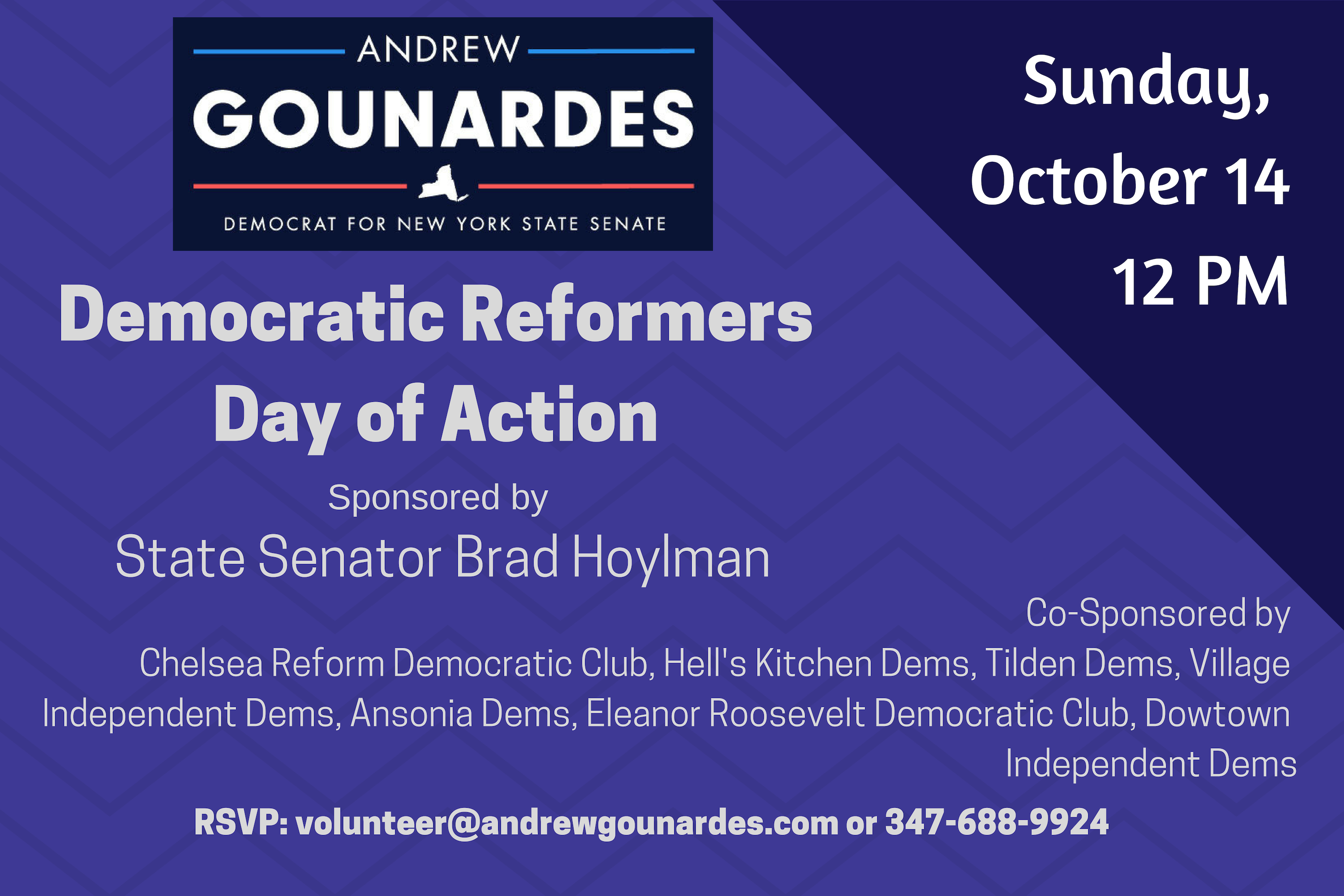 Democratic Reformers Day of Action