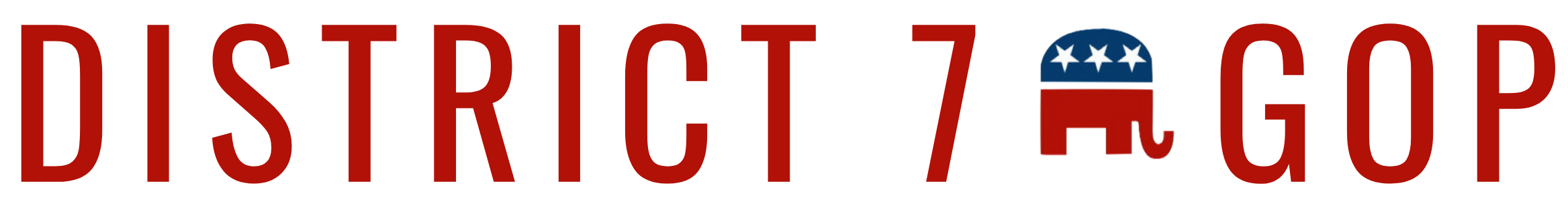 NC GOP Congressional District 7