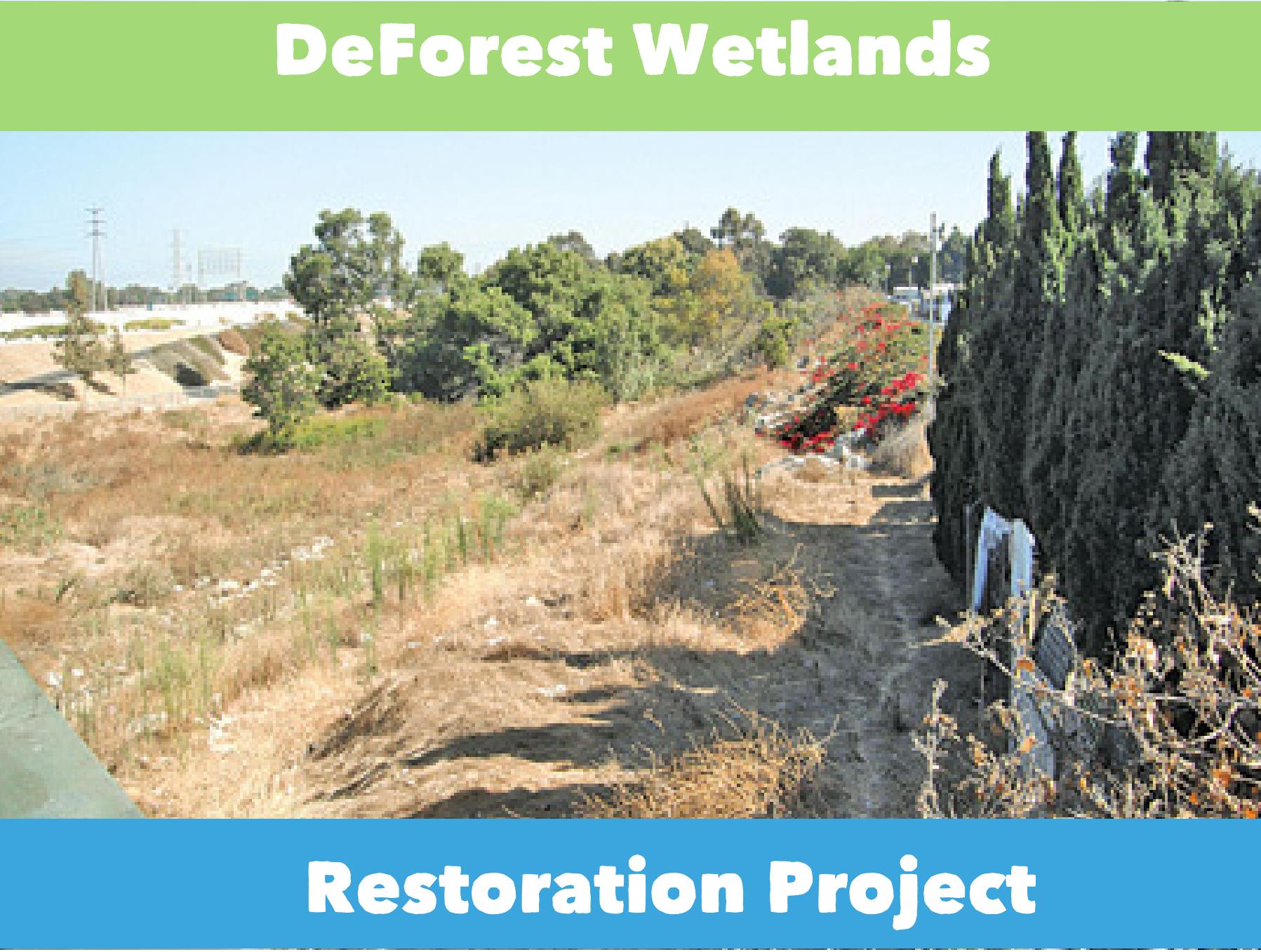 De_Forest_Wetlands_Final_Approval_Image.png