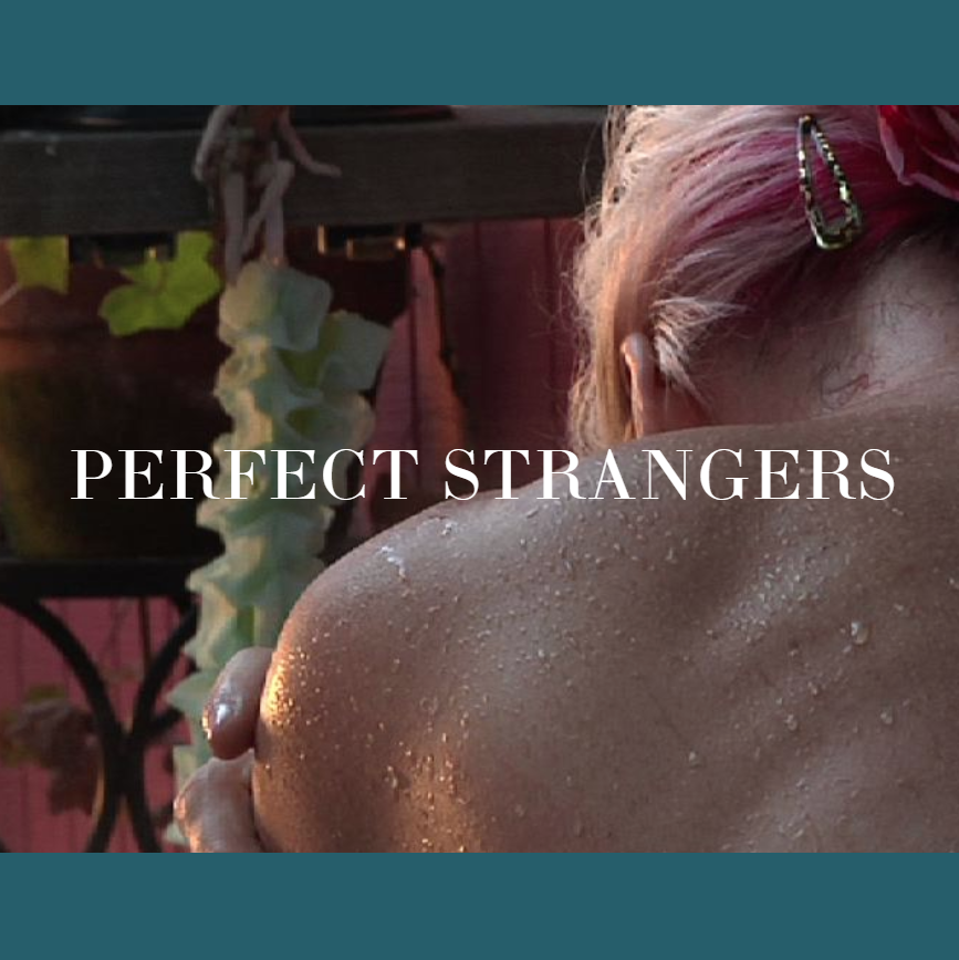 Film poster of Perfect Strangers Documentary by Docs In Progress' 2020 Filmmaker-in-Residence, Jan Krawitz