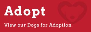 button_-_adopt_2.jpg