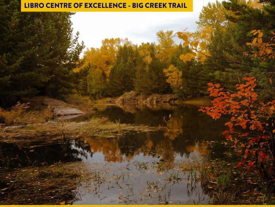 Big Creek in Autumn