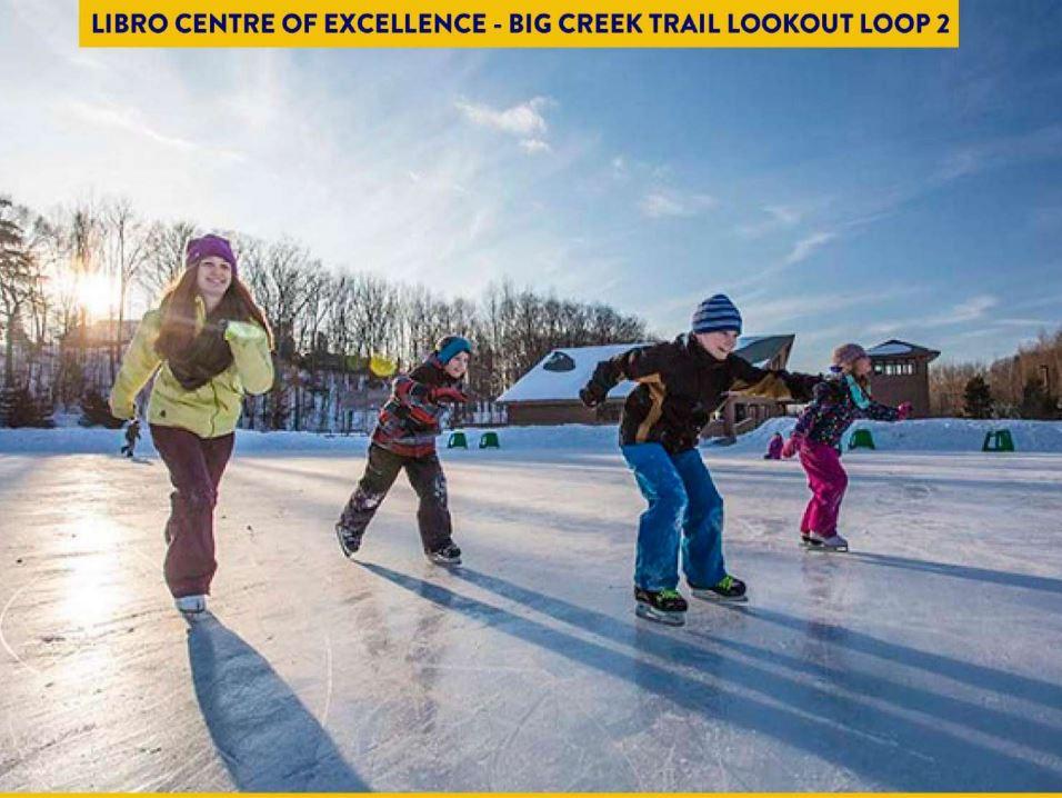 Children skating on a frozen creek