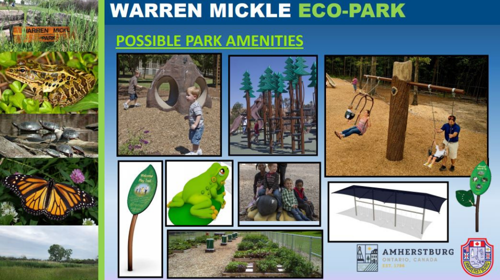 A mosaic showing possible park amenities including swings, a playground and community gardens.