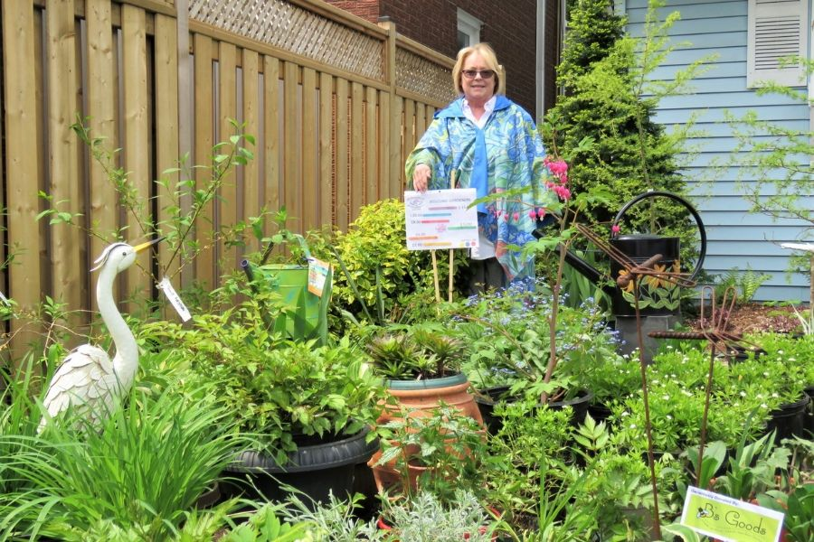 Linda Jackson surrounded by trees and plants that will be sold Saturday at the Fort Malden Horticultural Society's annual plant sale in Toddy Jones Park.