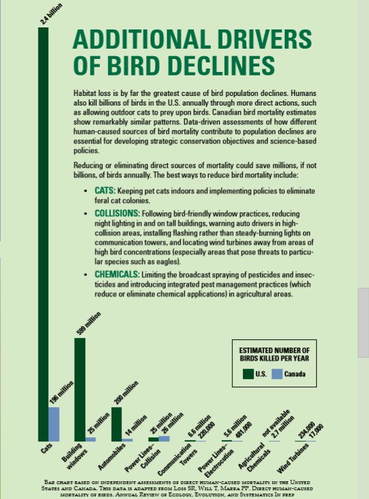 bird_declines.PNG