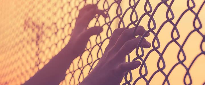 hep--C-prisons300.jpg
