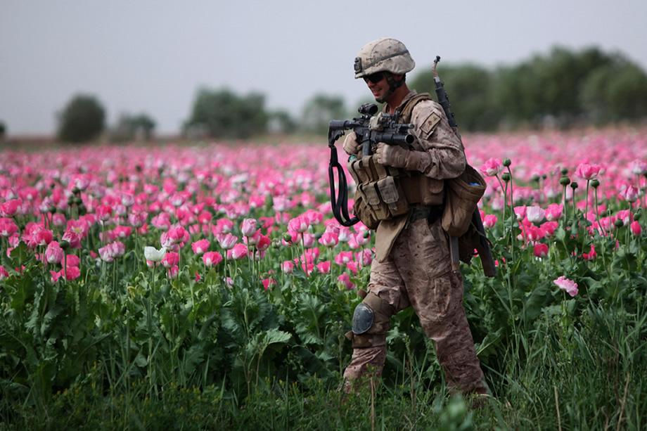 """Der Krieg in Afghanistan: Das wahre """"Jahrhundertverbrechen"""" hinter der Opioid-Krise"""