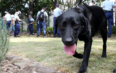 Police dogs harass and arrest music festival patrons