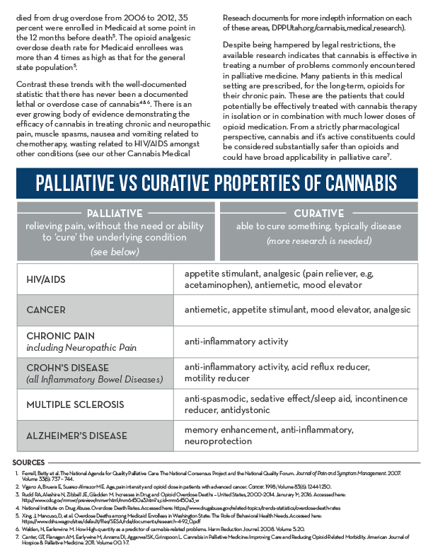 Palliative-Care-2.jpg