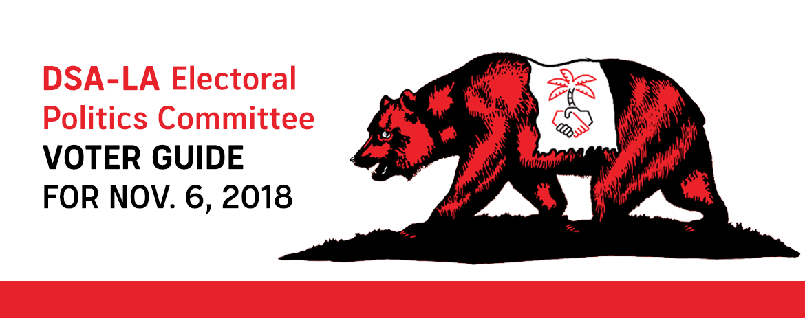 2018 General Election Voter Guide Dsa La