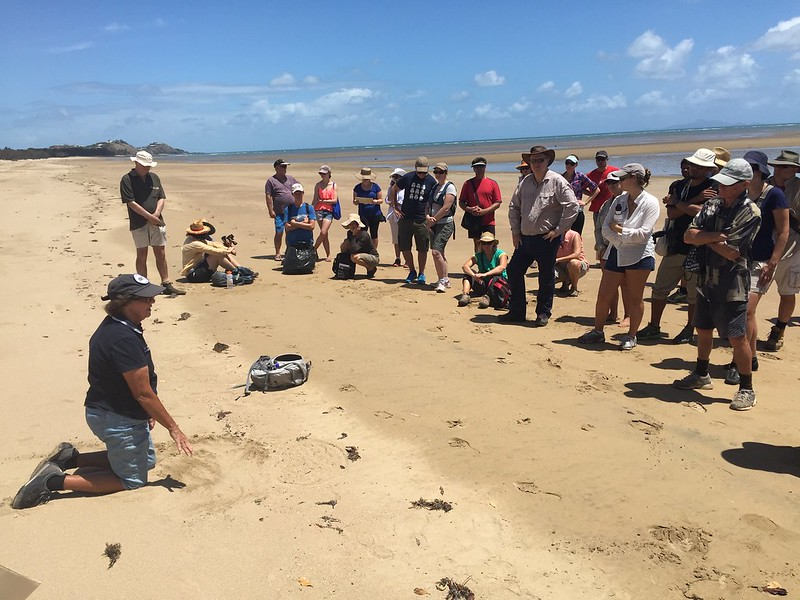 Turtle expert talking to a group of people at Bucasia Beach