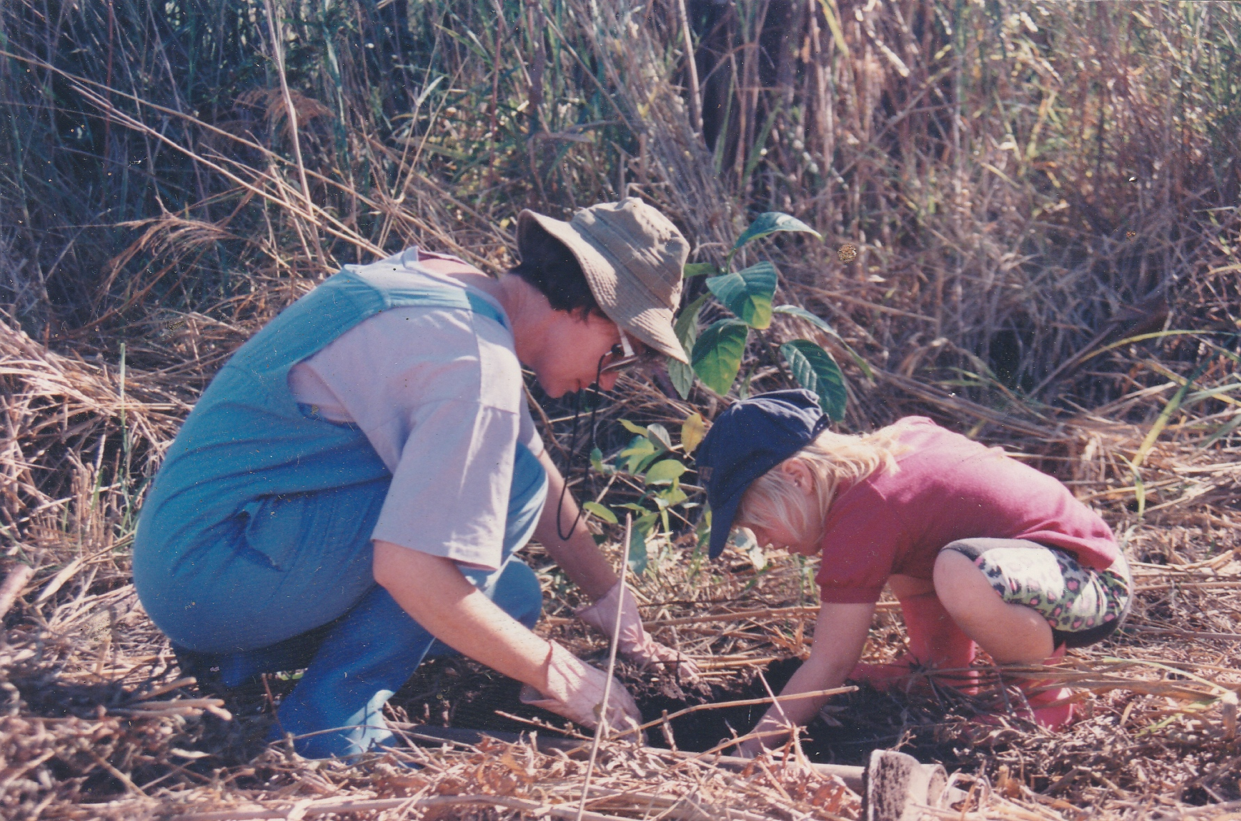 Dumbleton_Tree_planting_1994.jpg