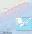 No Take Zones  Threaten Shore Fisheries