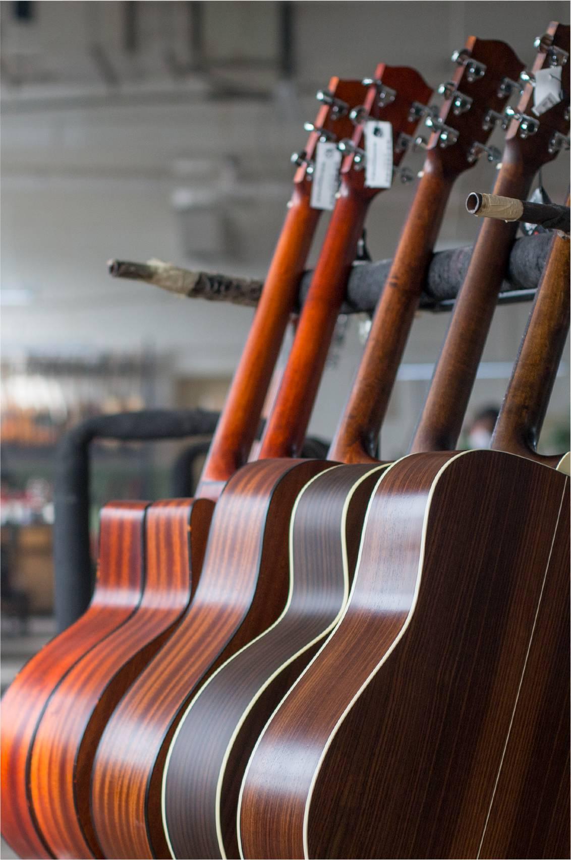 Acoustic Educational Eastman Guitars