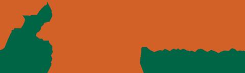 Healthy California Now logo
