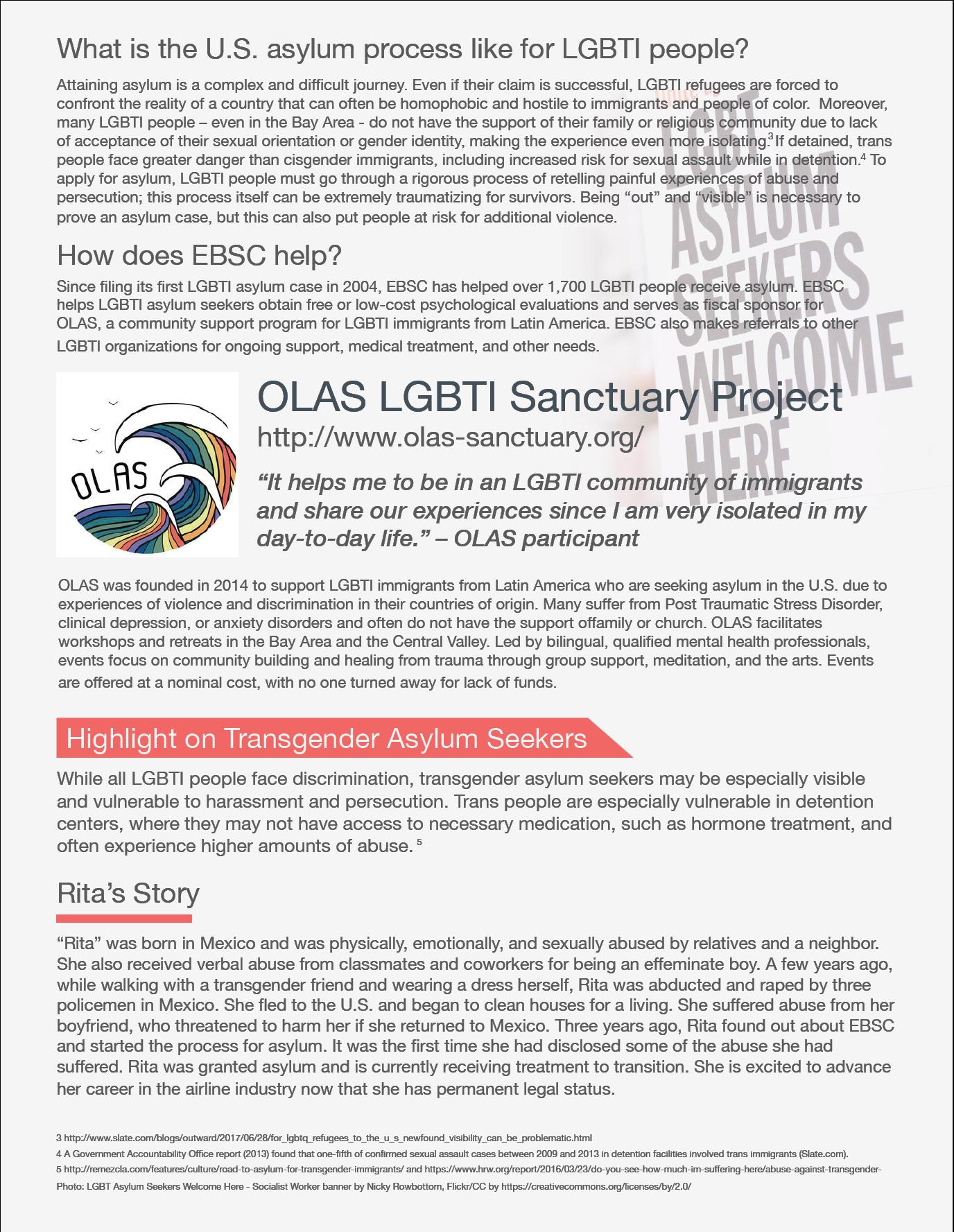 LGBTI_asylum_process.png