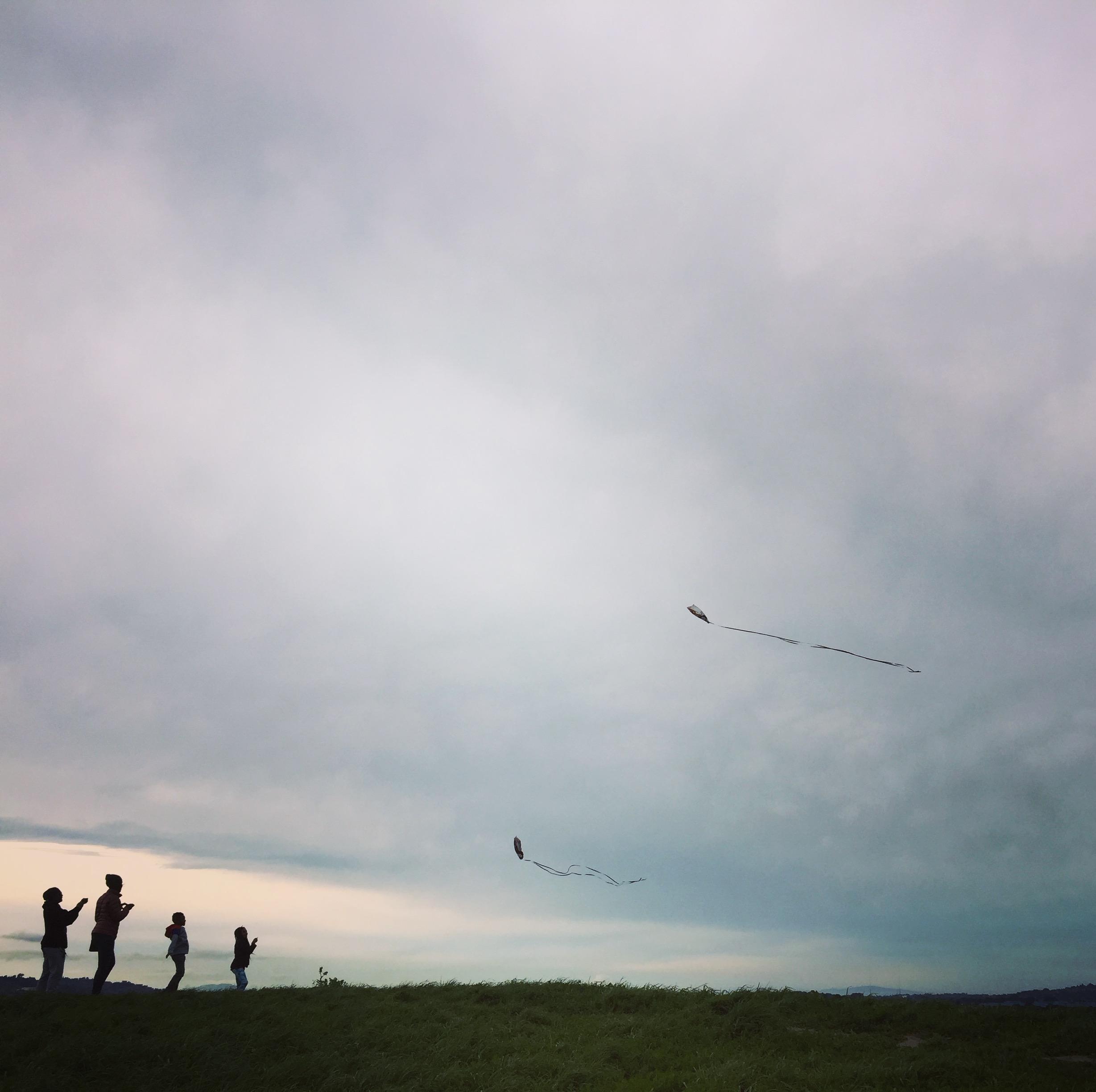 family_kites.jpeg