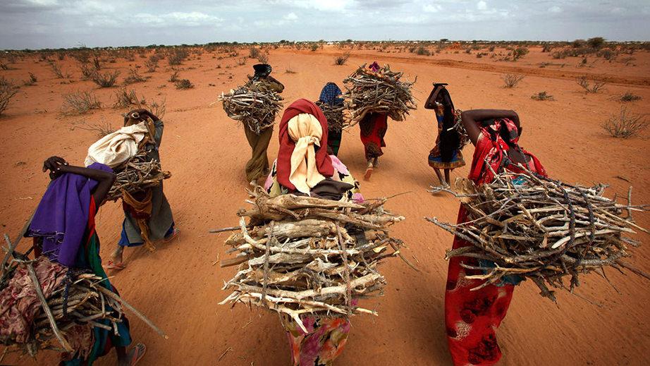 Somali-women-firewood2.jpg
