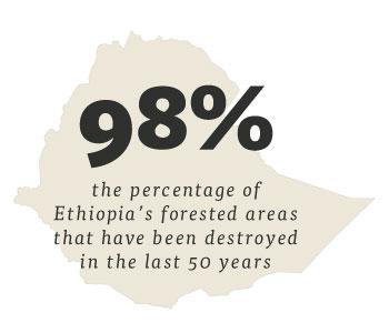 crisis-ethiopia.jpg
