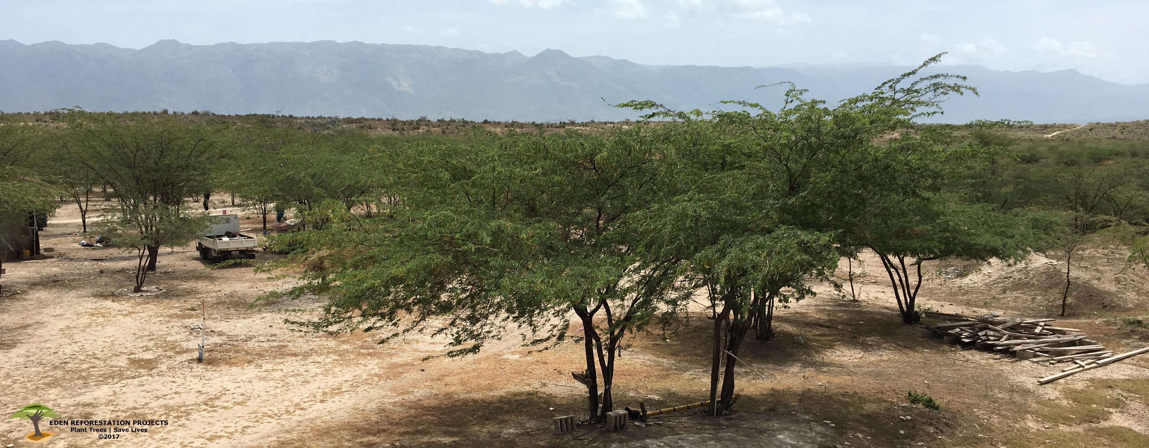 Haiti_panorama_with_watermark.jpg
