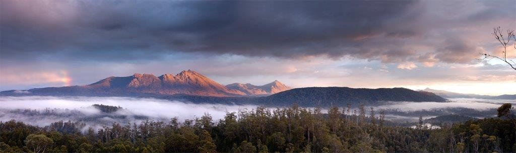 World Heritage listed Upper Florentine forest, Tasmania, by Kip Nunn
