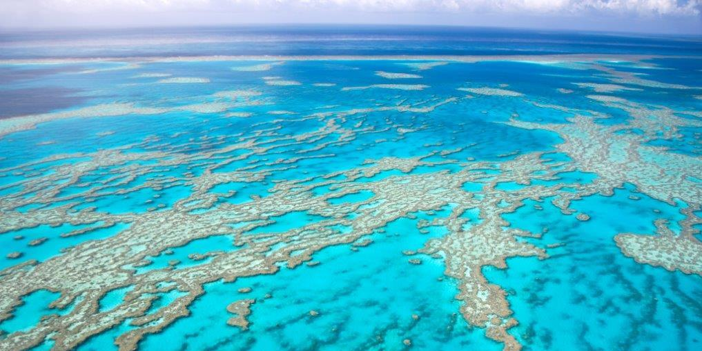 The Great Barrier Reef, Queensland