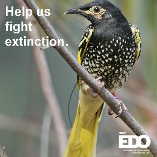 Help_us_fight_extinction_graphic320.jpg
