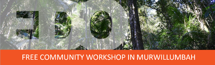 Free community workshop Murwillumbah