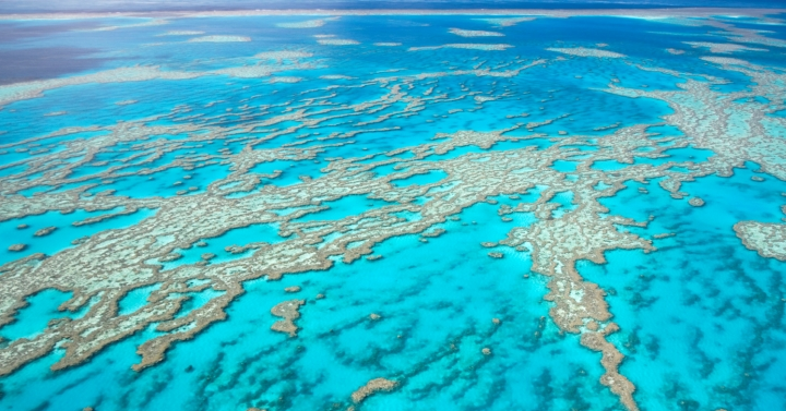 barrier_reef_720x377.jpg