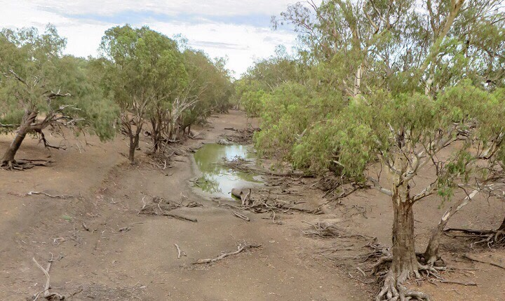 dry_river_Moree.jpg