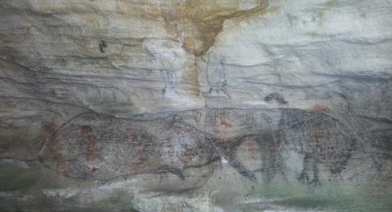 Whale_caves_near_Wollongong_Mark_Holden560.jpg