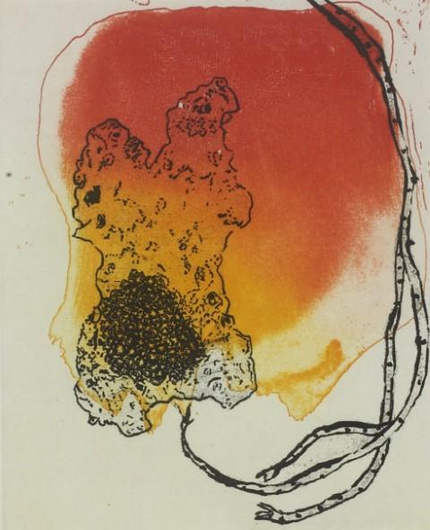''Heron Island Suite #20' etching by Judy Watson (2009)