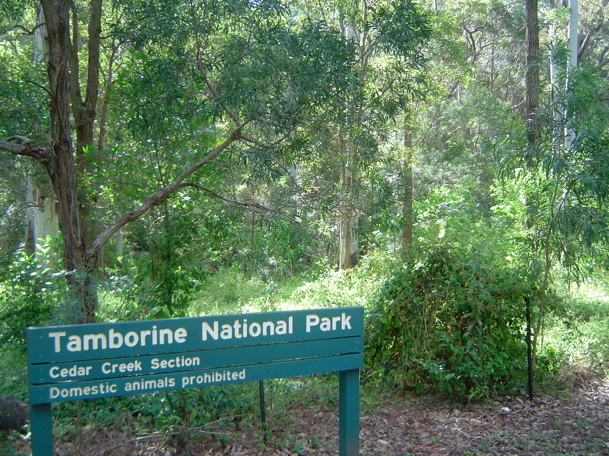 Tamborine Planning Appeal