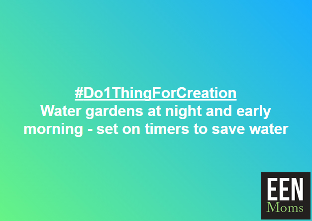 #Do1ThingForCreation - Water garden in the evening or morning to save water