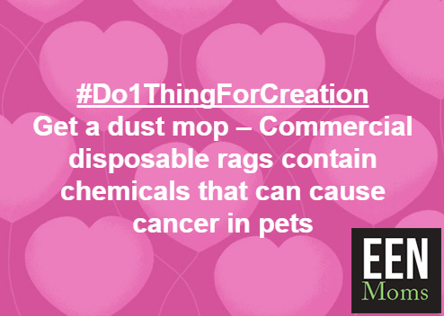#Do1ThingForCreation - Use Dust Mops