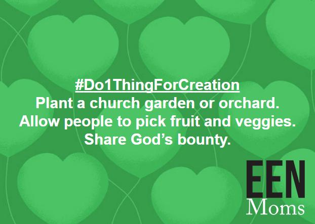 Plant a Church Garden